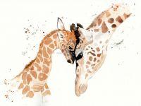 Amor de girafa