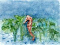 Cavallet de mar