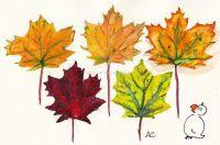 Herbstblaetterkatalog