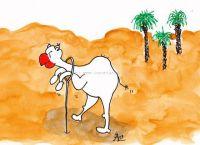 Dass ein Kamel...